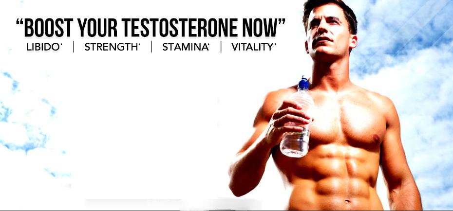 Does nolvadex increase testosterone